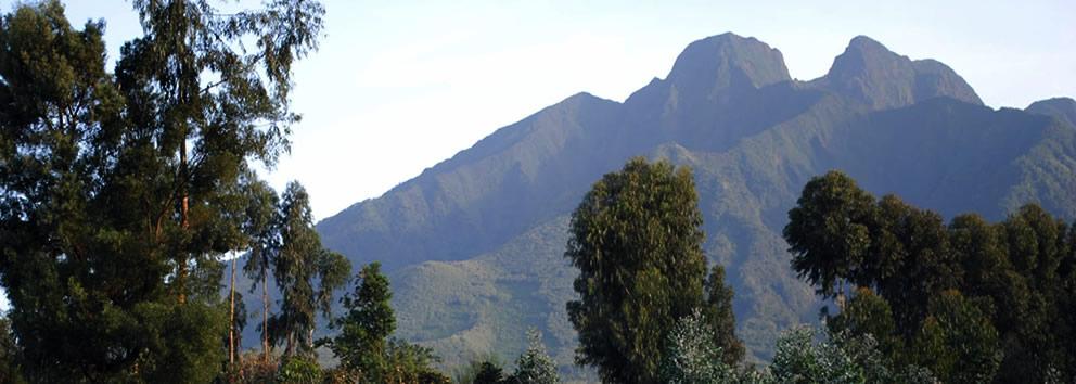 rwanda-safaris